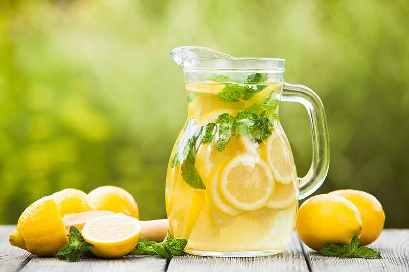 lemonade detox diet